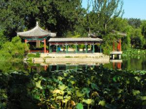 tsinghua-qing-garden-1